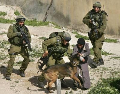 israel_carcel_palestinos.jpg