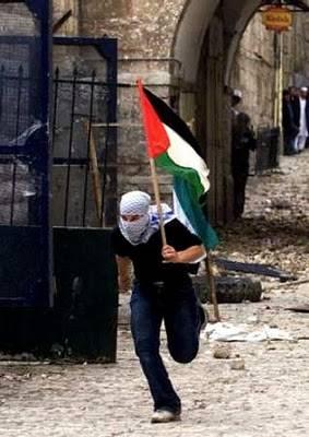 palestina_vencer_.jpg
